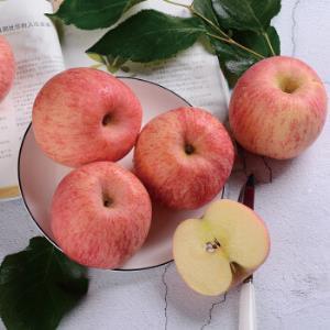 特级果 果径(出口级)85以上  烟台栖霞红富士苹果 2.5kg48.9元