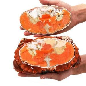 Seamix 禧美海产 野生熟冻面包蟹 400-600g43.6元