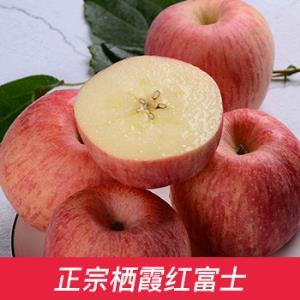 出口栖霞红富士 果径80-85 特级果 约3kg39.9元