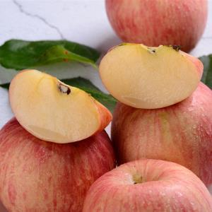 烟台栖霞红富士苹果 新鲜苹果水果 果径80-90 特级果 带箱3kg31.9元