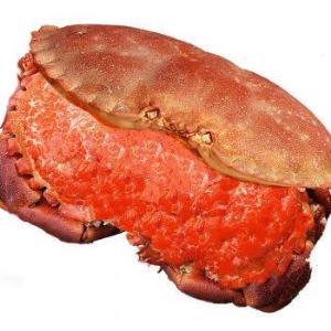 鲜佰客 英国熟冻面包蟹 1.6kg-1.2kg/2只 *4件236元包邮(双重优惠)