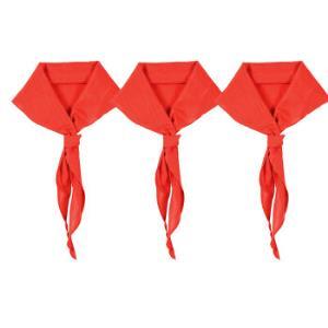 正彩(ZNCI)小学生少先队员红领巾布质柔软1.2米大号红领巾批发学生用品10条装 5314 15.6元
