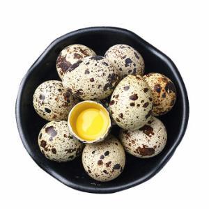黄河畔 农家新鲜鹌鹑蛋 30枚装 29.9元