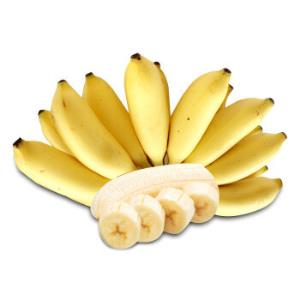 新鲜香蕉小米蕉  新鲜水果 4-4.5kg26.9元
