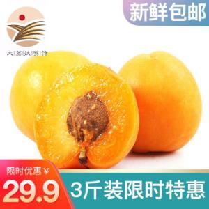 陕西特产大黄杏 2kg *2件 39.9元(需用券,合19.95元/件)