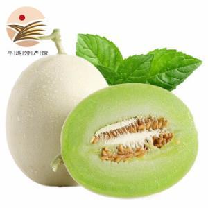 美荻斯玉菇甜瓜精品果净重2.3kg-2.5kg
