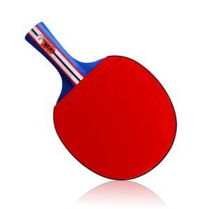 华士牌乒乓球拍入门娱乐款2只装送3颗球 9.8元(需用券)
