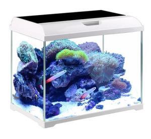 京东PLUS会员:森森(SUNSUN)超白鱼缸水族箱金鱼缸桌面封闭式生态鱼缸AT-350B+凑单品 99元