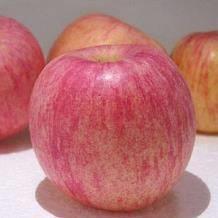 客聚多烟台红富士苹果5斤33.9元(需用券)