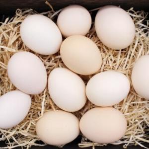 富润世鲜鸡蛋黄河滩养殖鸡蛋40枚 33.8元