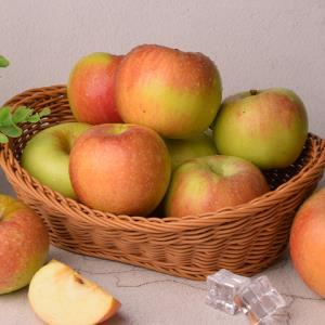 嘎啦苹果10斤新鲜水果当季脆甜丑萍果青当季包邮应季红富士批发511.9元