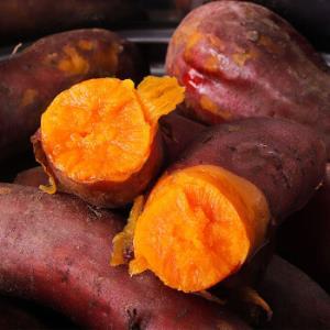 六鳌沙地红蜜薯小果5斤19.9元
