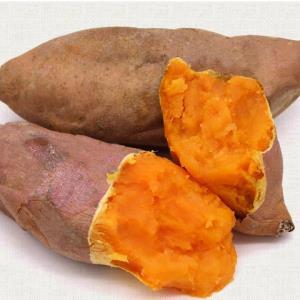 富润世黄河沙地红薯蜜薯净重5斤装12.9元