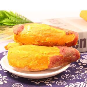 23日0点:高台子新鲜沙地板栗红薯地瓜5斤 7.9元