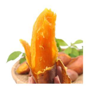 河南地瓜红薯2.5kg装 13.8元(需用券)