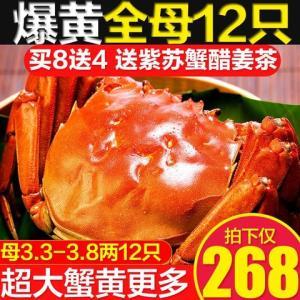 12只现货全母大闸蟹礼盒 268元