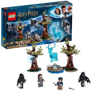 LEGO乐高HarryPotter哈利波特系列疾疾护法现身75945男孩女孩拼插积木玩具*2件256.2元(合128.1元/件)