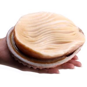 尚品绿洲进口黄金鲍去壳纯肉500g*3件 98.5元(需用券,合32.83元/件)