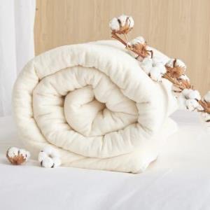 DAPU大朴天然新疆棉棉花被胎4斤1.5米床*2件 173元(需用券,合86.5元/件)