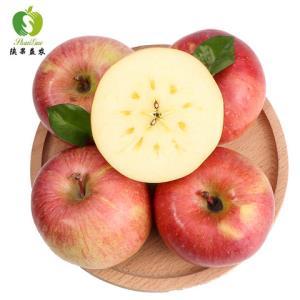 新疆阿克苏冰糖心苹果带箱10斤 39.9元