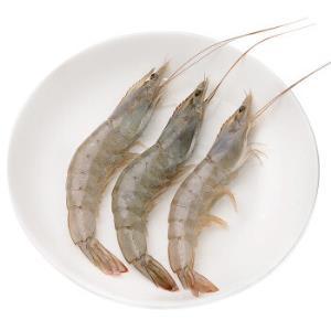 大洋世家厄瓜多尔白虾2kg80-100只*3件 359.95元(需用券,合119.98元/件)