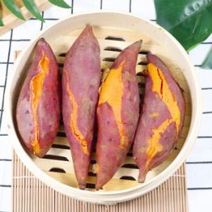 红薯新鲜西瓜红蜜薯十斤装(单个150-350g)26.9元(需用券)