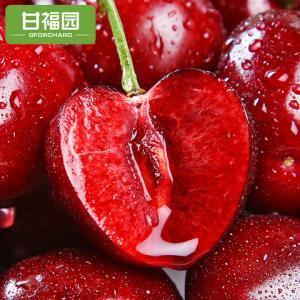 顺丰包邮大连大樱桃2斤装新鲜国产车厘子应当季孕妇水果整箱批发 86.9元
