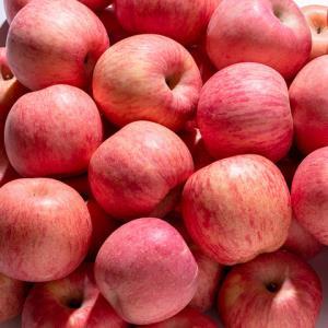 山东烟台红富士苹果10斤带箱一级糖心条纹新鲜当季脆甜水果整箱512.9元