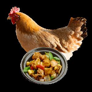 依禾三黄鸡新鲜冷冻农家散养白条鸡土鸡童子鸡新鲜生鸡肉买一送一50.54元