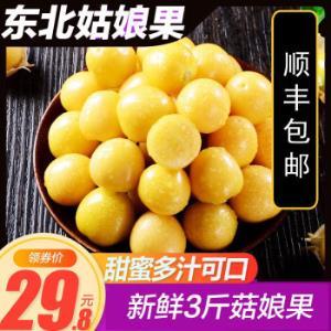 东北菇娘果3斤1斤海伦共合镇菇娘果之乡甜菇娘原产地3斤 24.8元(需用券)
