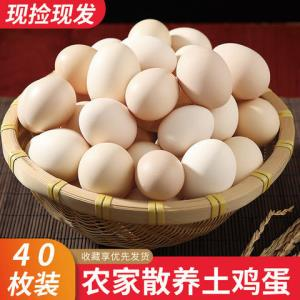 正宗农家散养土鸡蛋新鲜营养笨鸡蛋当天现捡整箱包邮破损包赔虫草    12.6元