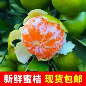 CAITI采缇新鲜青皮蜜桔3斤中大果中大果9.9元(需用券)