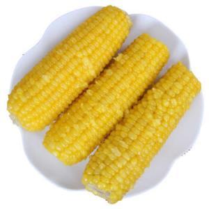 界梁山东北绿色黄糯玉米新鲜现摘真空包装即食甜玉米精品棒*8根 27.9元(需用券)