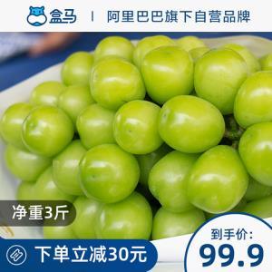 盒马阳光玫瑰青提净重3斤当季新鲜水果葡萄日本品种提子时令葡萄 99.9元
