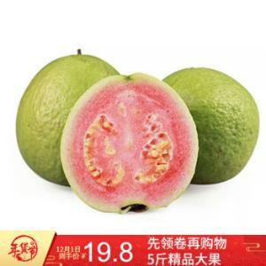 红心芭乐果番石榴新鲜水果孕妇水果9斤 29.9元