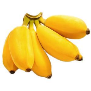 寻味君广西小米蕉带箱5斤 19.8元