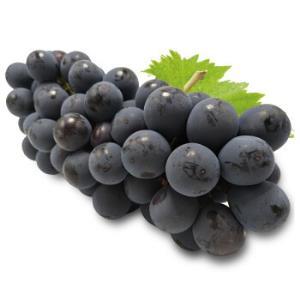 云南精品无籽夏黑葡萄提子新鲜水果夏黑葡萄4斤串装 37.9元