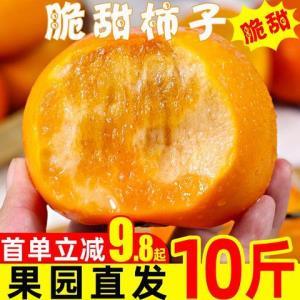 脆柿子水果新鲜5斤当季整箱包邮应季现摘大果甜柿火晶黄硬柿子10 9.8元(需用券)