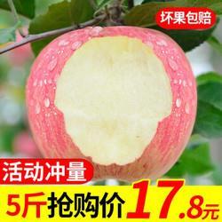 甜果源陕西红富士苹果新鲜水果脆甜糖心丑苹果5斤装15.5元