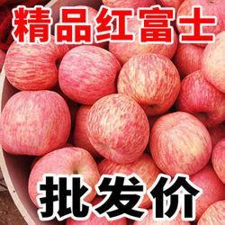 红富士糖心苹果水果新鲜当季丑苹果9.9元(需用券)