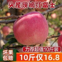 陕西红富士苹果新鲜水果10斤当季整箱批发应季糖心丑苹果脆甜包邮17.9元