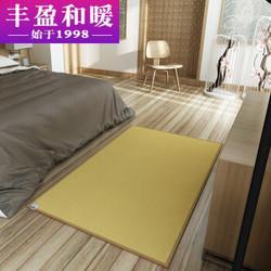 丰盈和暖碳晶电加热地毯冬季瑜伽电热地暖垫取暖毯卧室电暖器地暖毯韩国电热地毯地热垫180*100LG0853709元