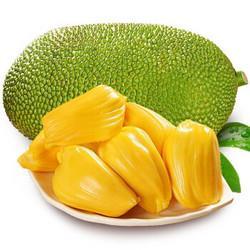海南新鲜现摘菠萝蜜18-22斤装68.8元(需用券)