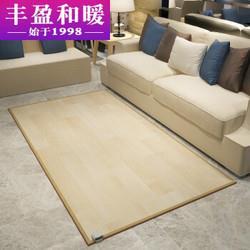 丰盈和暖碳晶电加热地毯冬季瑜伽电热地暖垫取暖毯卧室电暖器地暖毯韩国电热地毯地热垫180*100LG0711709元