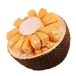 小马乐活红肉菠萝蜜当季新鲜水果整箱包邮红肉菠萝蜜6-8斤62.8元(需用券)