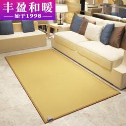 丰盈和暖碳晶移动地暖垫电热地毯韩国取暖毯电热瑜伽垫榻榻米电热炕板冬季高温取暖器200*100LG0853739元