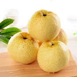 京东PLUS会员:正宗安徽砀山酥梨新鲜水果梨子*5件15.8元(需用券,合3.16元/件)