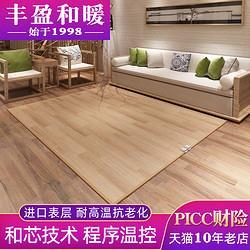 丰盈和暖碳晶电热毯2米榻榻米炕板地暖毯地热垫双温双控230*2001246元