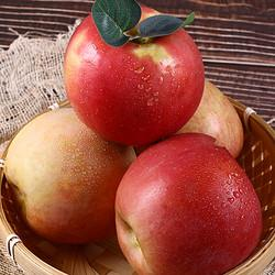 荆公河南新鲜糖心红富士苹果6.8元(需用券)