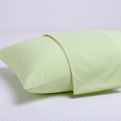 SHERWOOD喜屋磨毛纯色枕套成人枕芯套枕头套一对装苹果绿50*75cm对装 19元